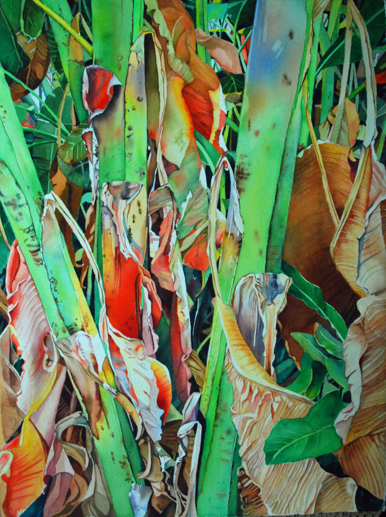 MALING 3 BANANA TREE
