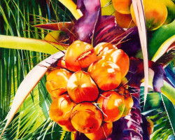C_Something tasty_Judith Miller-Red Coconuts