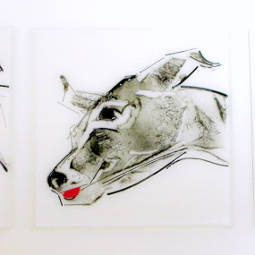 Drawing With Glass, Liana Martin