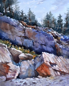HOLTER Violets Ridge 2