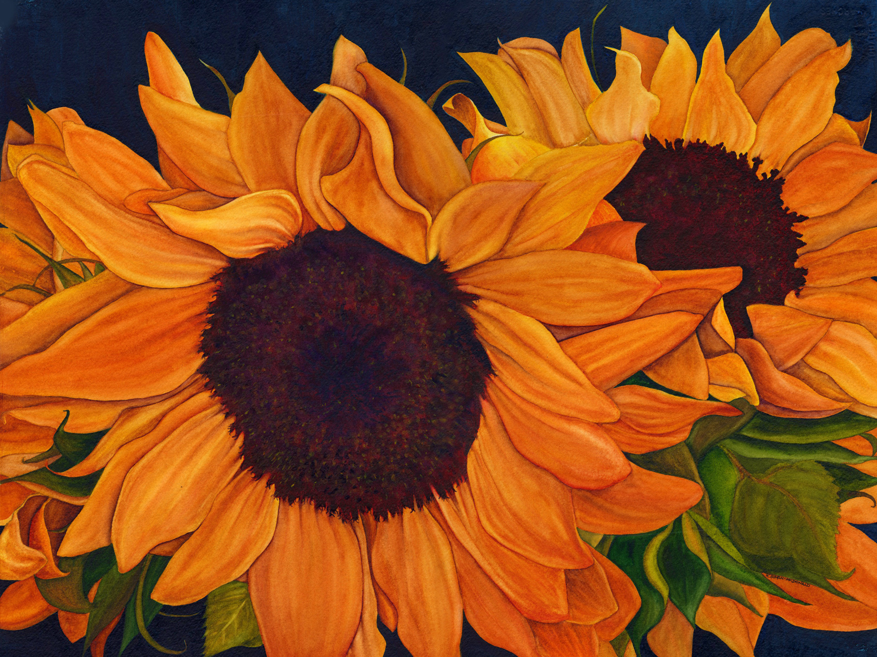 Sunflowers by Kathy Simon_McDonald $660