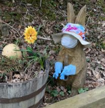 Covid Easter Bunny by Marianne Barnebey