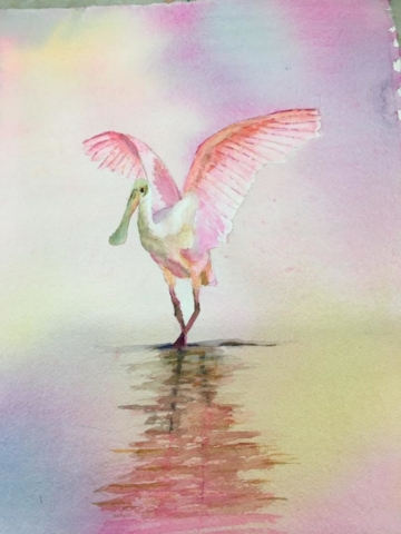 Spoonbill Reflections by Merrie Lynn Parker