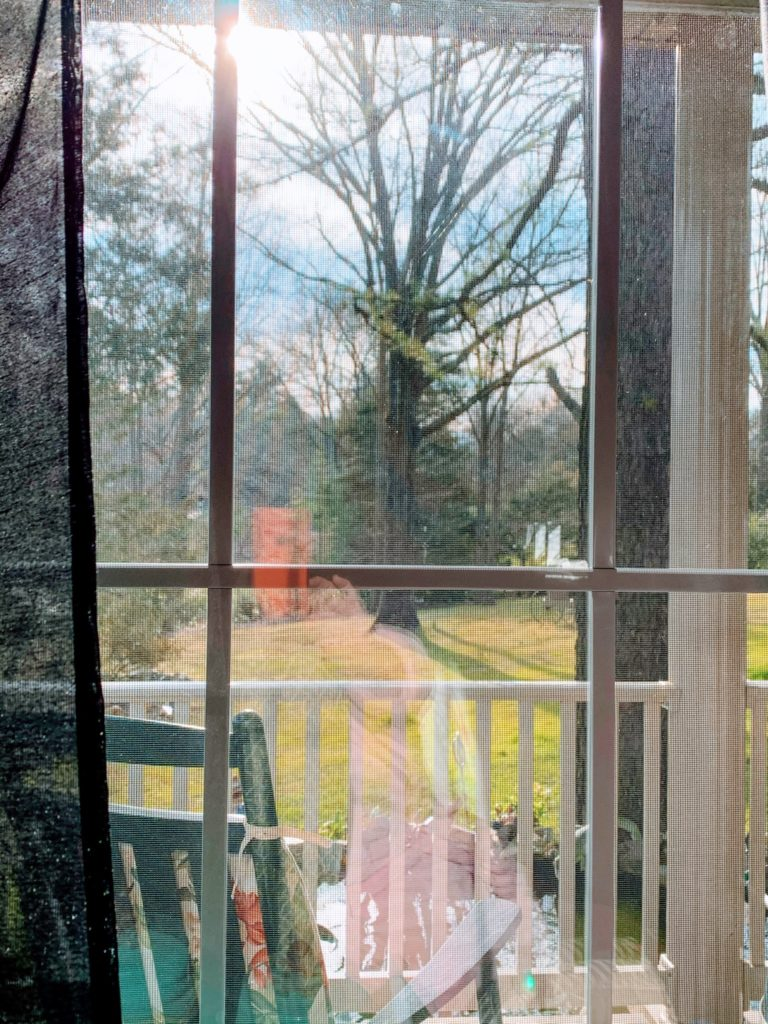 Spring Through Moms Window by Julie Lonegro